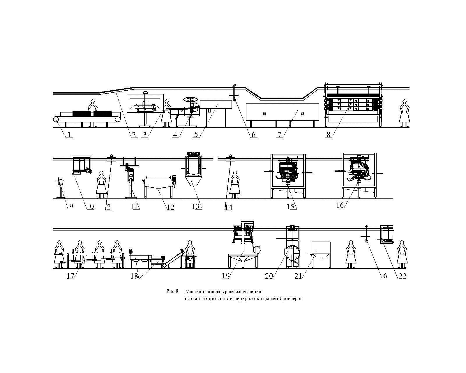 машино-аппаратурная схема линии автоматизированной переработки  цыплят-бройлеров