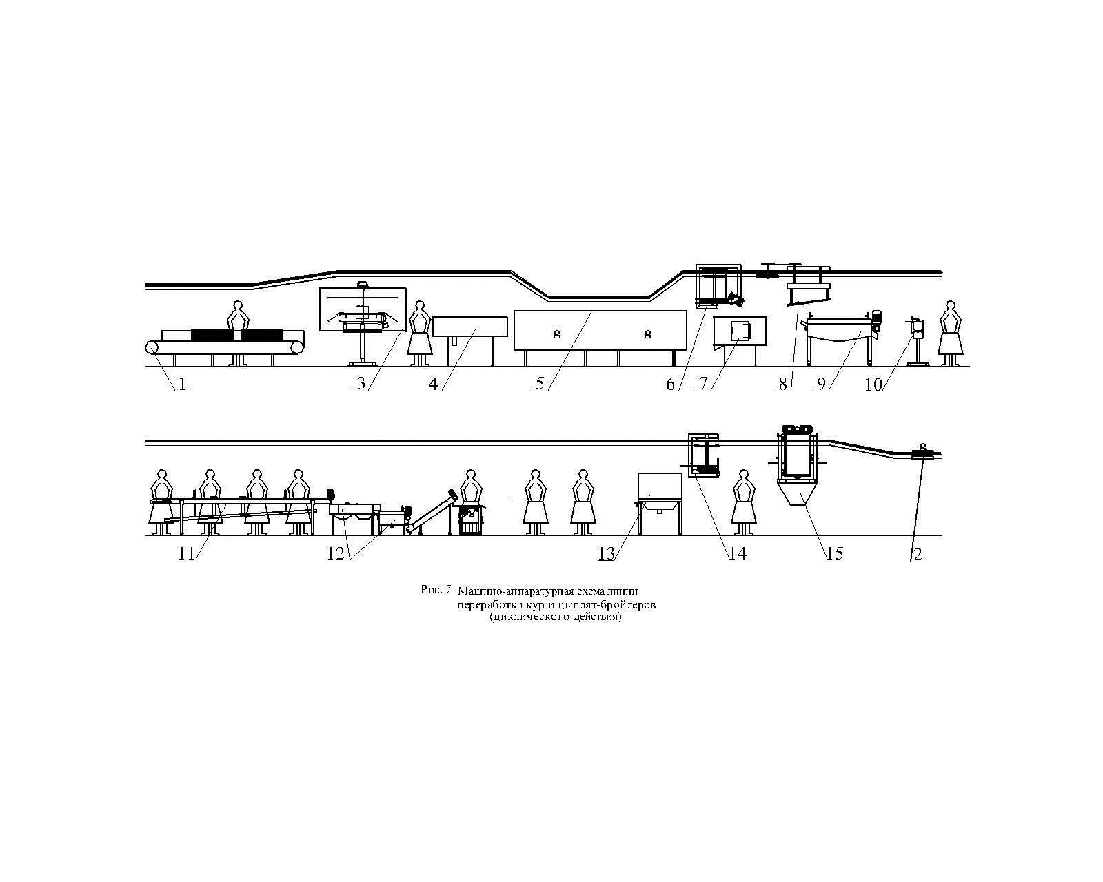 машино-аппаратурная схема линии переработки кур и цыплят-бройлеров (циклического действия)