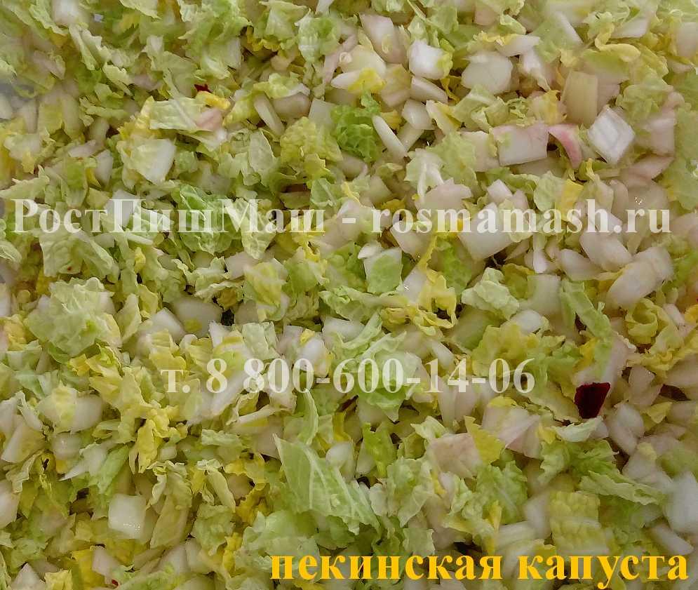 Нарезка пекинской капусты на Машине для резки CHD-100
