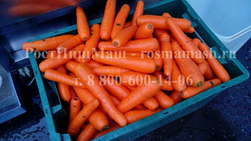 Мойка моркови на Машине для полировки и мойки корнеплодов GB-1000