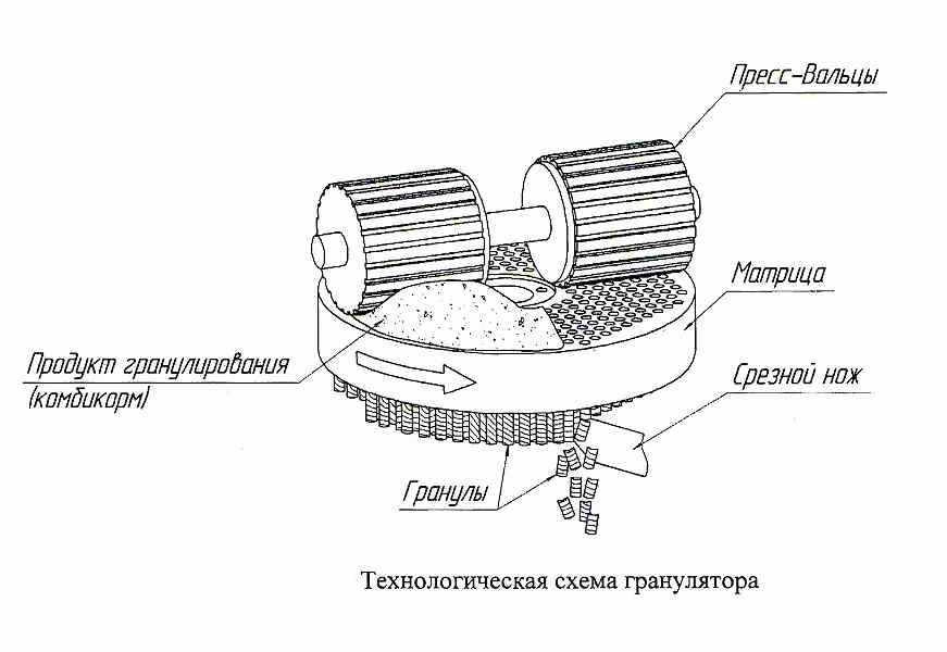 Схема пресс-гранулятора серии ДГ