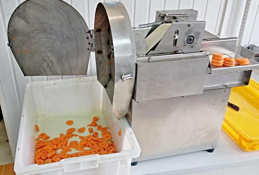 Машина для нарезки моркови РПМ-ЛШ-01