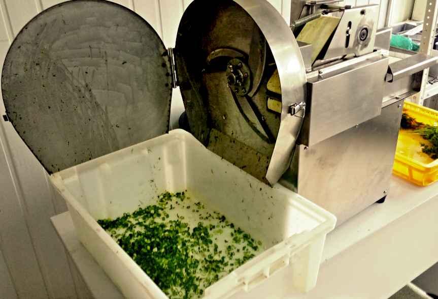 Машина для нарезки овощей и зелени РПМ-ЛШ-01