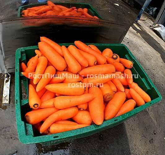 Машина для мойки и чистки корнеплодов РПМ-МЧ-1000