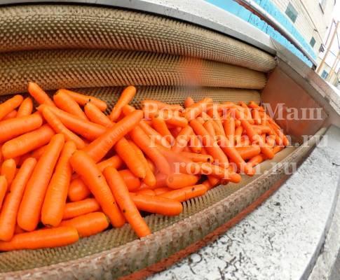 Машина щеточная для мойки моркови GB-1800