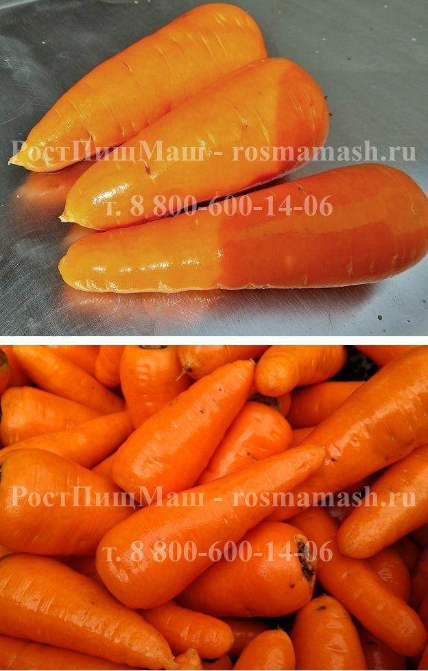 Машина мойки моркови корнеплодов РПМ-МЧ-1000