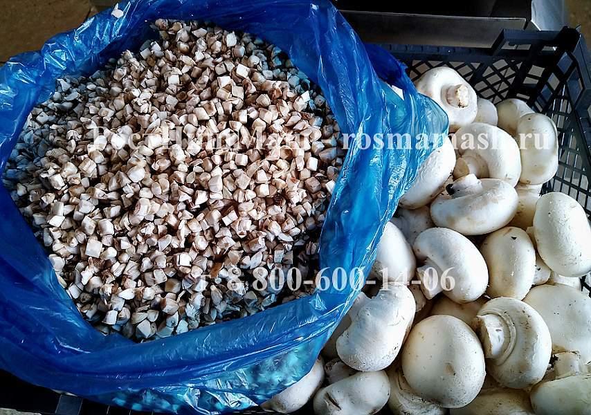 Шинковка сырых грибов шампиньонов кубиком на CHD-100
