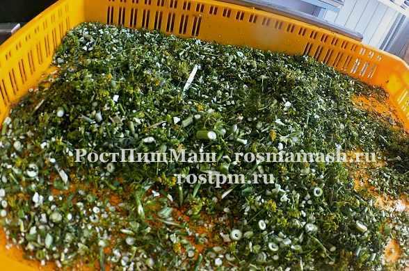 Машина шинковки зелени и овощей DQC-605