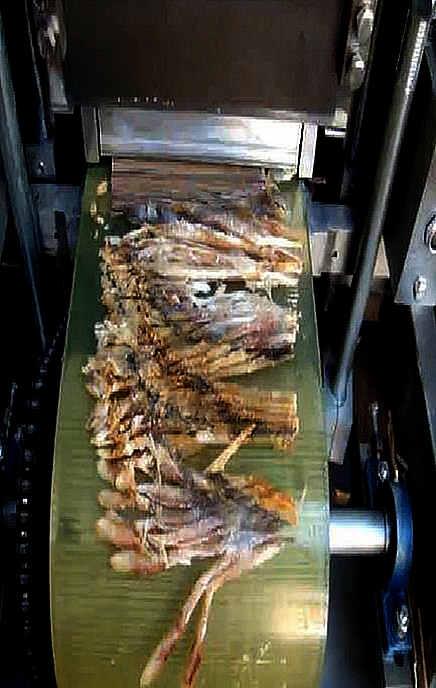 Нарезка рыбы на Гильотине для резки ZSQL