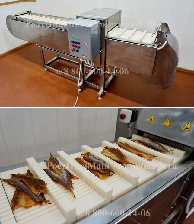 Машина нарезки для рыбы, с модульным транспортером ИПКС-074-01-200-01МЧ(Н)
