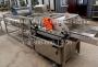Машина мойки салатных листьев GB-4500 барботажного типа