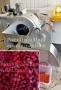 Овощерезка для нарезки свеклы кубиком CHD-100