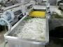 Линия для мойки огурцов до 1500 кг/час